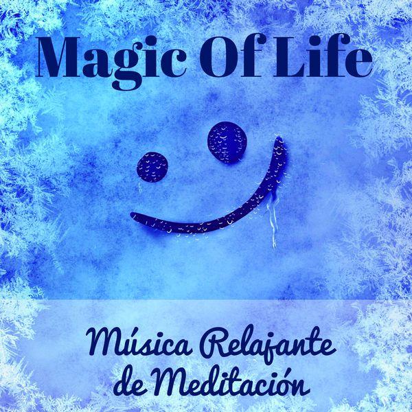 Magic of life m sica relajante de meditaci n para mejorar la concentraci n cuerpo saludable y - Relajacion para dormir bien ...