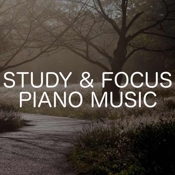 Download Electronic Music for Studying Concentration ...