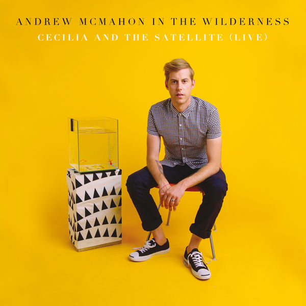 Cecilia And The Satellite Andrew Mcmahon In The