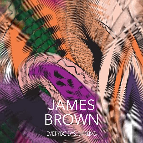 James Brown Everybodys Doin The Hustle Dead On The Double Bump