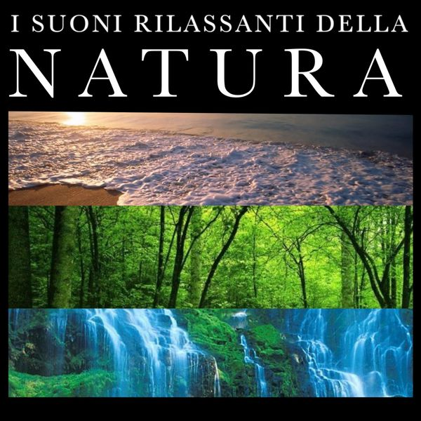 Recent searches download suoni della natura