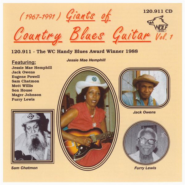 Various - Country Blues Obscurities Vol. 1