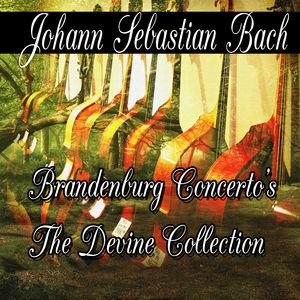 Johann Sebastian Bach: Brandenburg Concerto's The Divine Collection