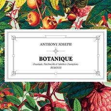 Botanique (Remixes EP)