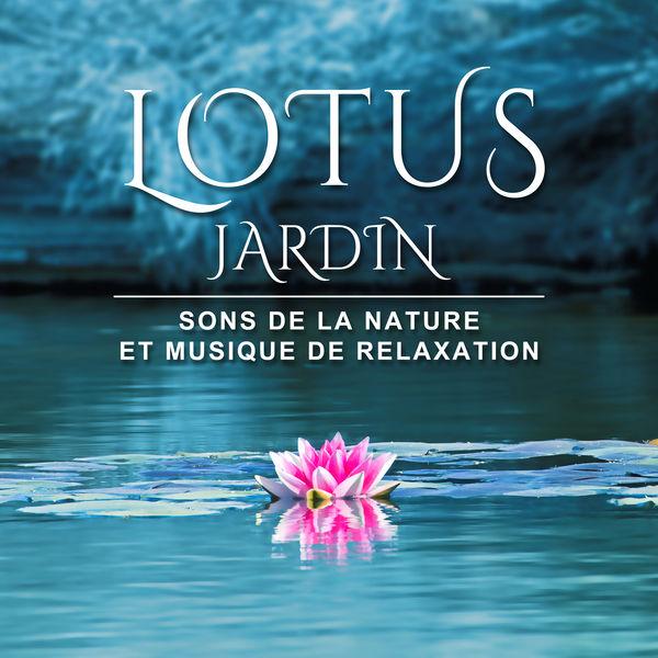 lotus jardin sons de la nature et musique de relaxation yoga pilates massage reiki tai. Black Bedroom Furniture Sets. Home Design Ideas