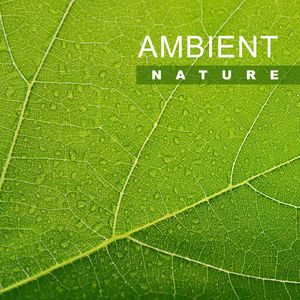 Ambient Nature – Calm Down with Soothing Sounds, Relaxing Waves, Rest Yourself