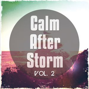Various - After The Storm