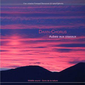 Naturophonia: Dawn-Chorus, aubes aux oiseaux