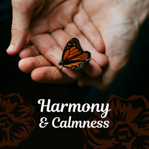 Harmony & Calmness – Spa Music, Relaxation Wellness, Deep Sleep, Sea Waves, Soothing Piano, Pure Mind