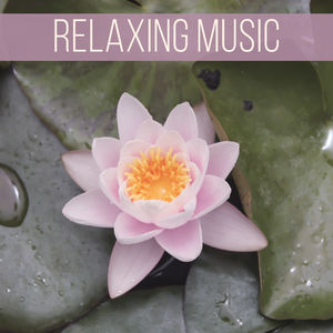Relaxing Music – Sounds of Nature for Meditation, Yoga, Spa, Massage, Calm Waves, Birds Sounds