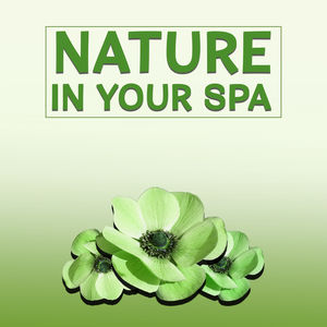 Nature in Your Spa – Relaxation Wellness, Peaceful Music for Massage, Spa, Soothing Piano, Nature Sounds to Rest, Spa Dreams