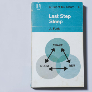 Last Step — Sleep