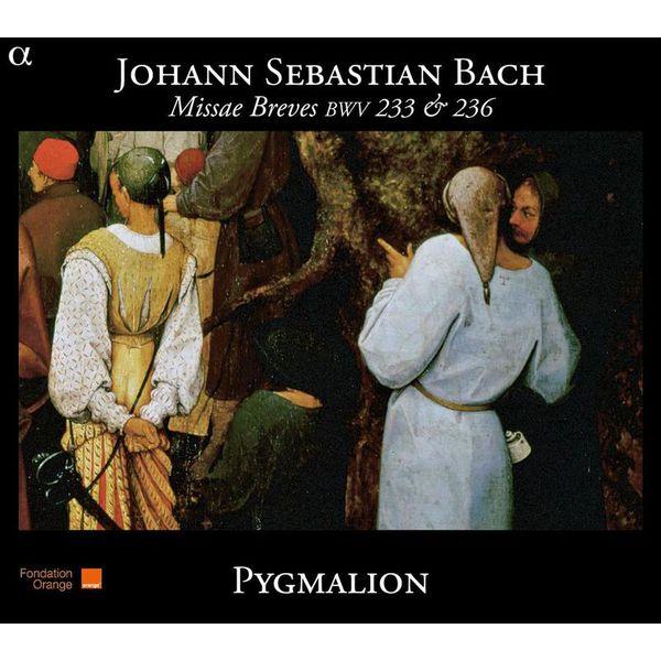 Raphaël Pichon - Bach : Missae Breves, BWV 233 & 236