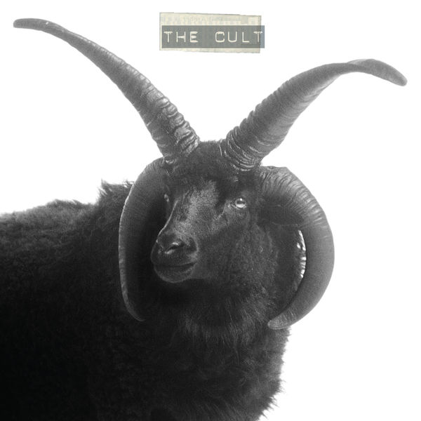 The Cult|The Cult