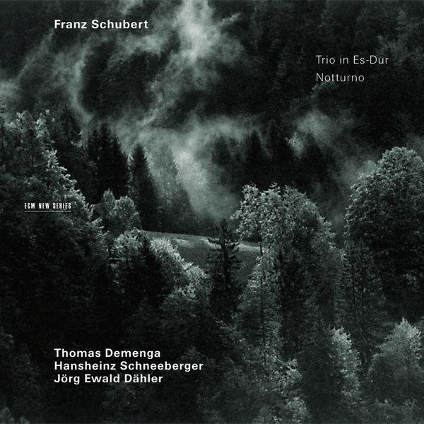 Thomas Demenga - Schubert: Trio in Es-Dur, Notturno