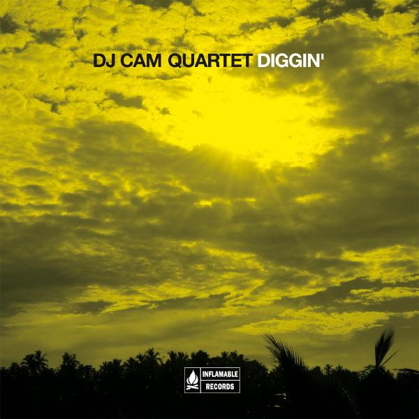 The essential | dj cam & dj cam quartet.