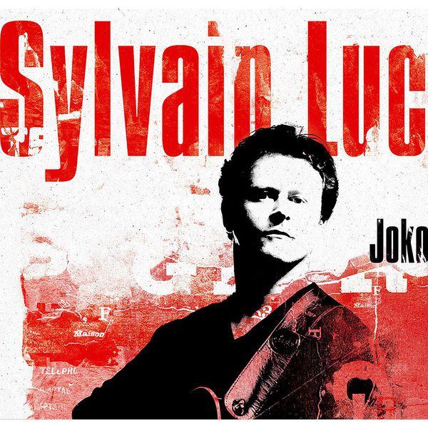 Sylvain Luc - Joko