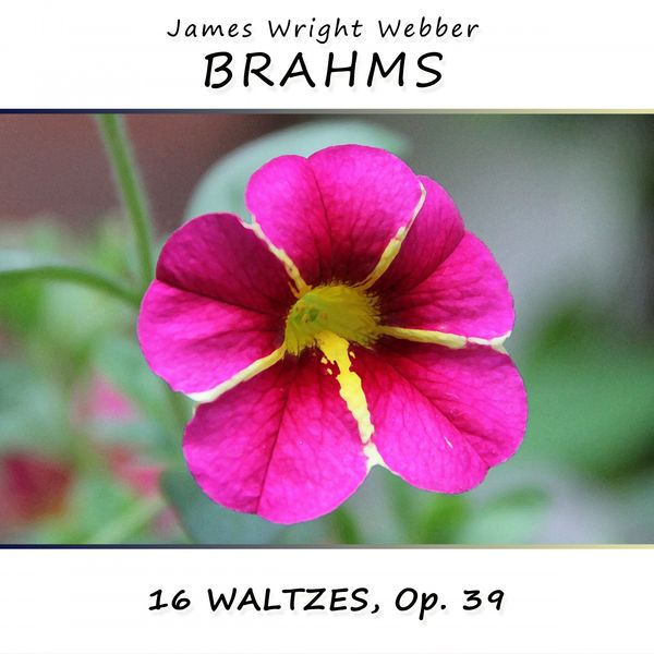 James Wright Webber - Brahms: 16 Waltzes, Op. 39