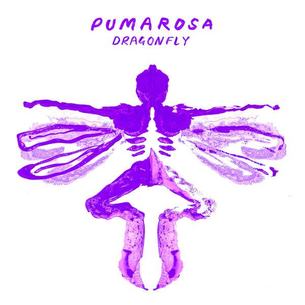 Pumarosa Dragonfly