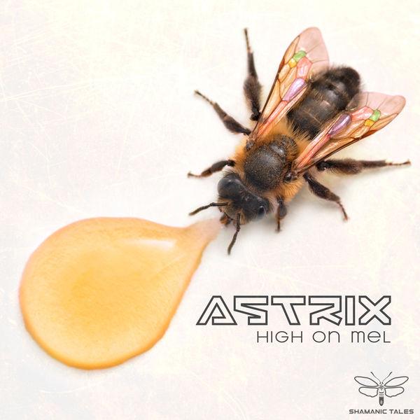 Astrix - High on Mel