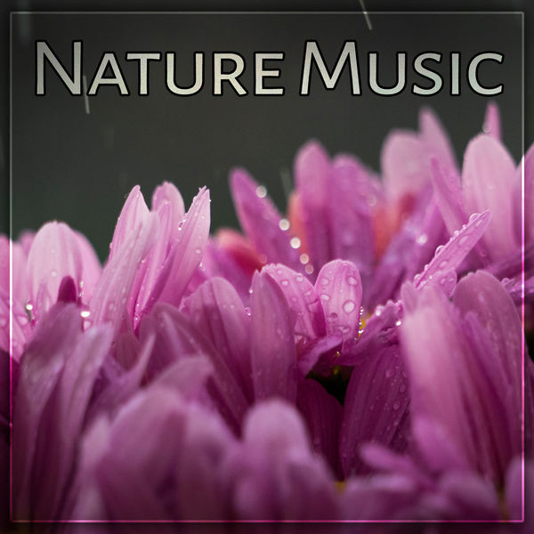 Nature Sounds Artists - Nature Music – Fabulous Nature Sounds of Birds and Ocean Waves, Relaxing Music for Total Rest, Calming Sounds of New Age Music