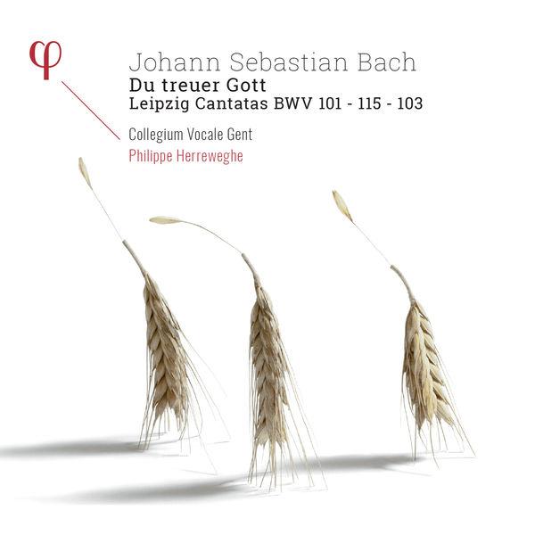 Philippe Herreweghe|Bach : Leipzig Cantatas BWV 101, 103 & 115