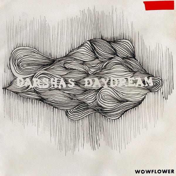 Wowflower - darshas daydream