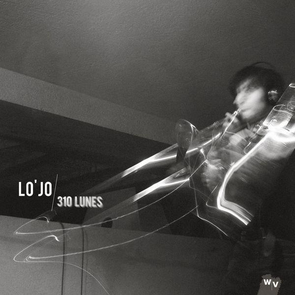 Lo'Jo - 310 Lunes, Photographie d'un objet sonore