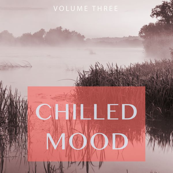 Various Artists - Chilled Mood, Vol. 3 (Kick Back And Relax.. You Earned It.)