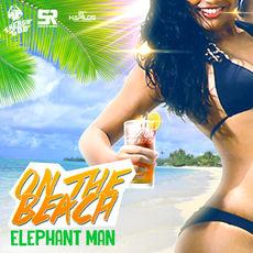 Man elephant single
