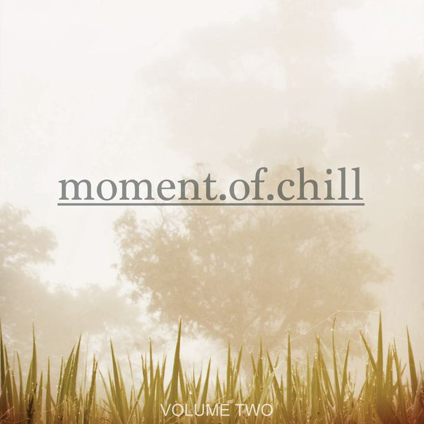 Various Artists - Moment Of Chill, Vol. 2 (Finest Selection Of Music To Chill)