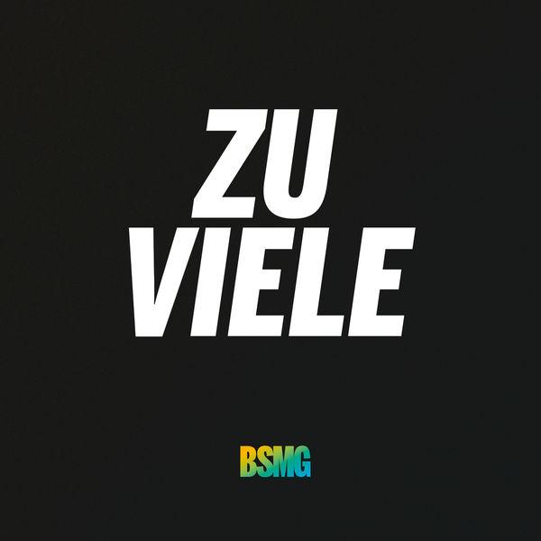 BSMG - Zu viele