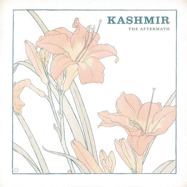 Kashmir - The Aftermath