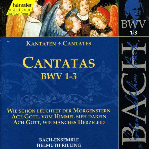 Helmuth Rilling - Johann Sebastian Bach : Cantatas, BWV 1-3