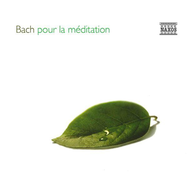 Enno Voorhorst - Bach pour la méditation