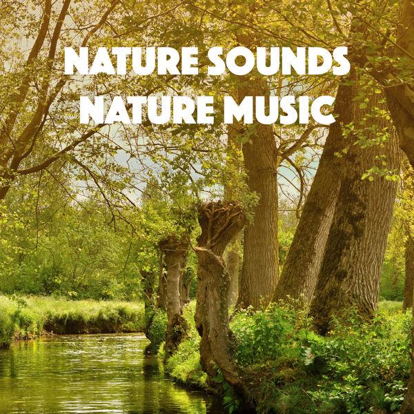 Relajacion del Mar - Nature Sounds Nature Music