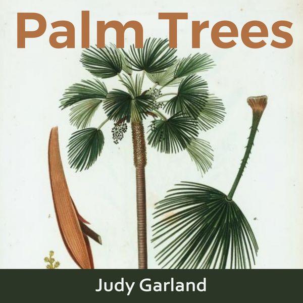 Judy Garland - Palm Trees