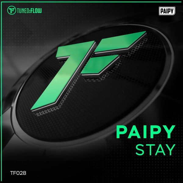 Paipy - Stay
