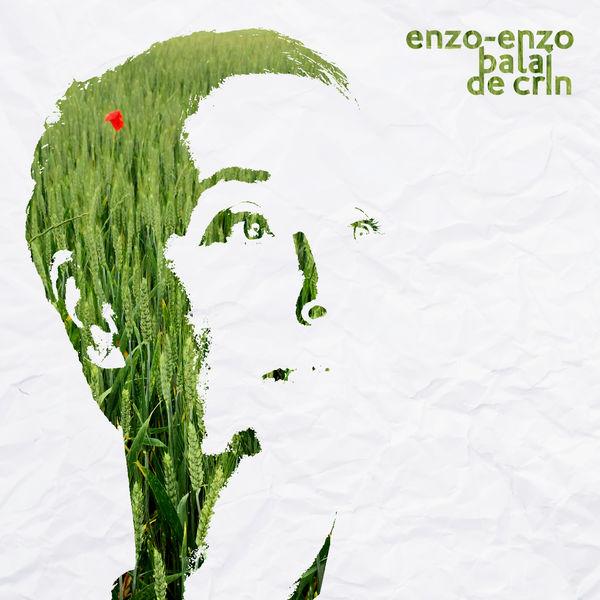 Enzo Enzo - Balai de crin