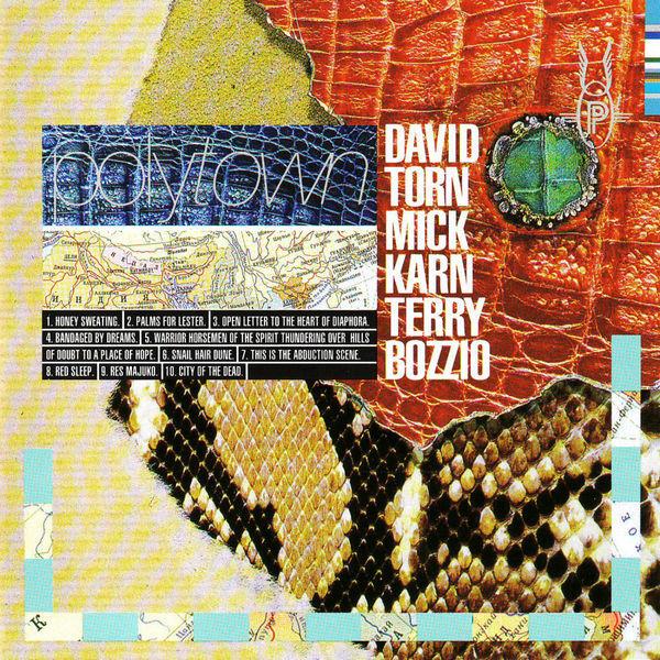 David Torn - Polytown