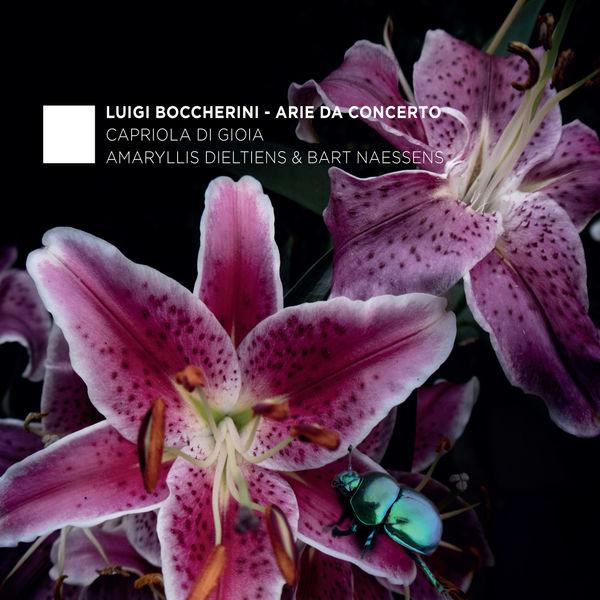 Luigi Boccherini - Boccherini: Arie da Concerto
