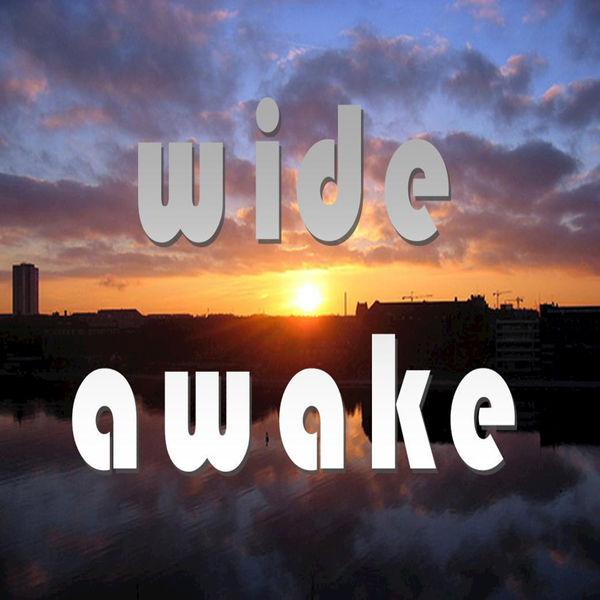 wide awake mp3 320kbps