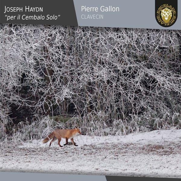 Pierre Gallon - Joseph Haydn: Per il cembalo solo
