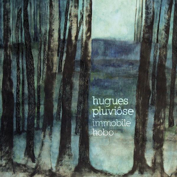 Hugues Pluviose - Immobile hobo