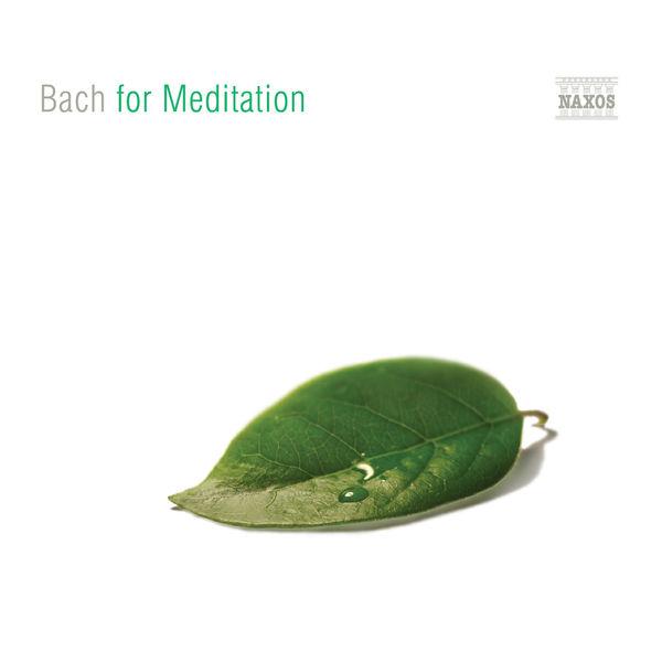 Enno Voorhorst - BACH FOR MEDITATION