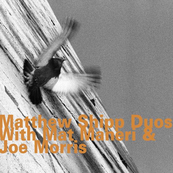 Matthew Shipp - Matthew Shipp Duos with Mat Maneri & Joe Morris