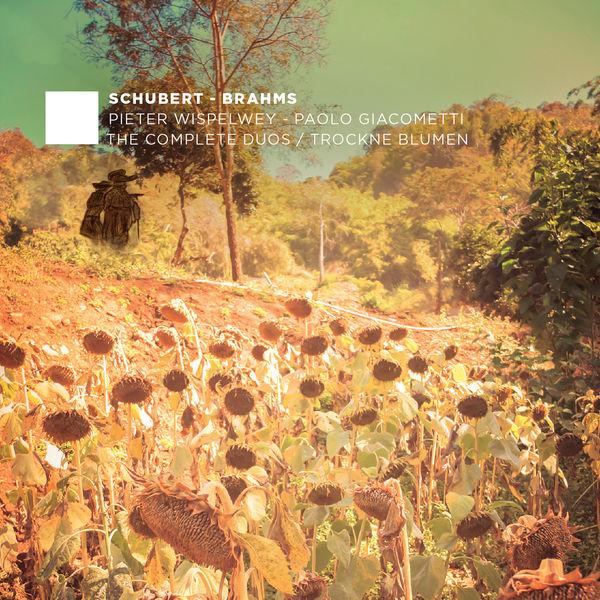 Johannes Brahms - Schubert & Brahms: The Complete Duos (Vol. 2) - Trockne Blumen