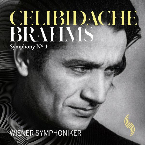 Wiener Symphoniker - Brahms: Symphony No. 1