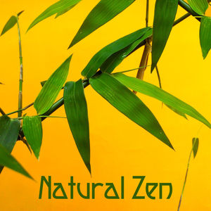 Natural Zen – Meditation Sounds, Deep Healing, Nature Sounds