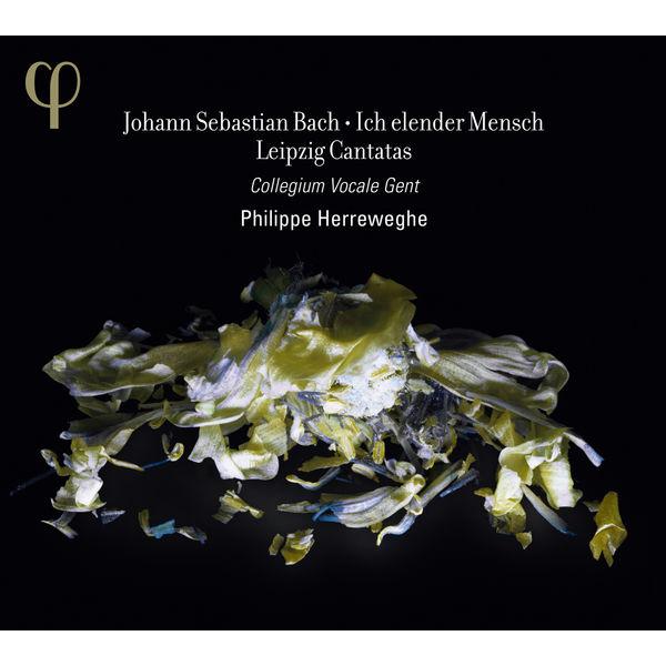 Philippe Herreweghe - Johann Sebastian Bach : Ich elender Mensch & Leipzig Cantatas (BWV 44, 48, 73, 109)